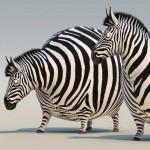 Rollin' Safari: ITFS 2013 und FMX 2013 bekommen tierische Trailer (UPDATE)