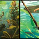 Pixars newt Konzeptbild 7