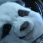 KIA Space Babies: Automarke betreibt Aufklärung der dritten Art