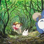 Mein Nachbar Totoro – SteelBook Edition ab Februar